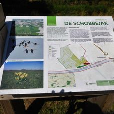 wandeling 13 STALHILLE (8)